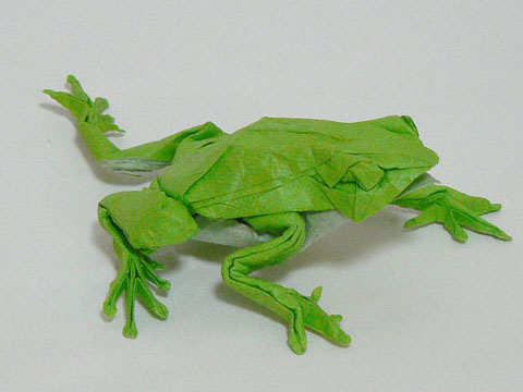 Origami Tree Frog